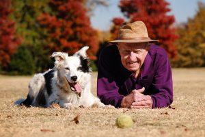Интеллектуальные способности собак, или 1000 слов - не предел