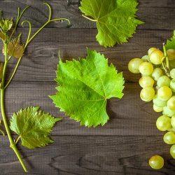 Отравление виноградом и изюмом